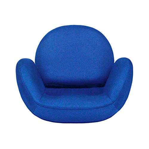 tegopo 座椅子 腰痛 コンパクト リクライニング 6段階調節 メッシュ 幅55cm 奥44cm 高41cm TZ001-M1 ブルー色