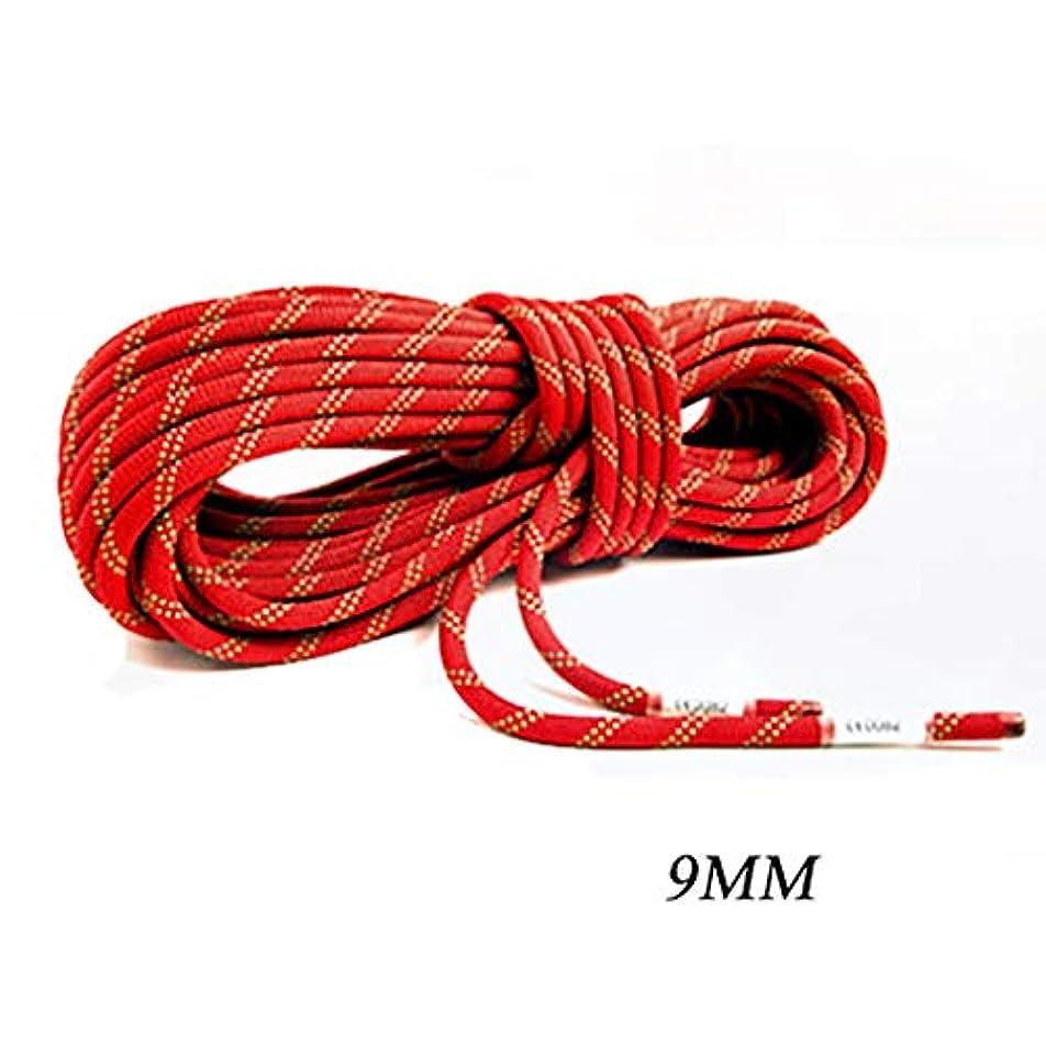 活性化ブレークこどもの宮殿ロープ(張り綱) スタティックロープアウトドア登山用ラペリングロープナイロン耐摩耗クライミング用安全ロープΦ9MM(0.35in)オレンジグリーン (サイズ さいず : 80M(262.4FT))