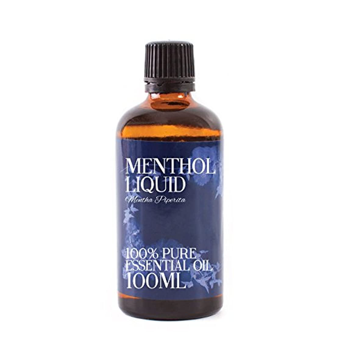 主婦抗生物質毛皮Mystic Moments | Menthol Liquid Essential Oil - 100ml - 100% Pure
