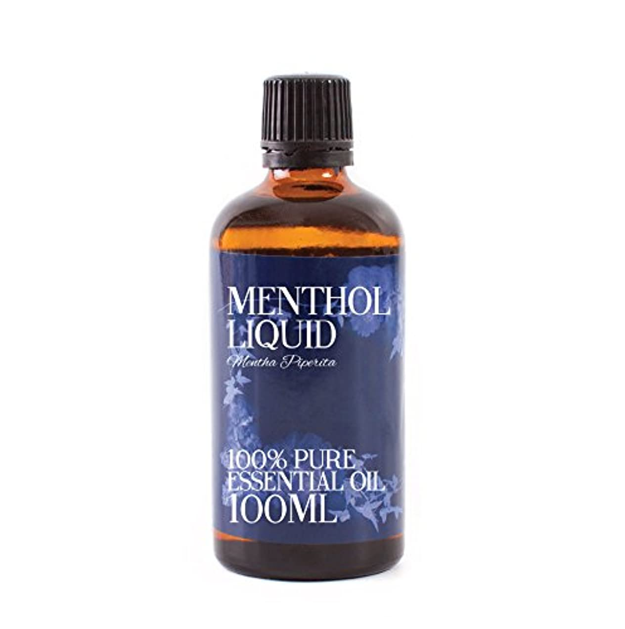ダイジェストドメイン満足できるMystic Moments | Menthol Liquid Essential Oil - 100ml - 100% Pure
