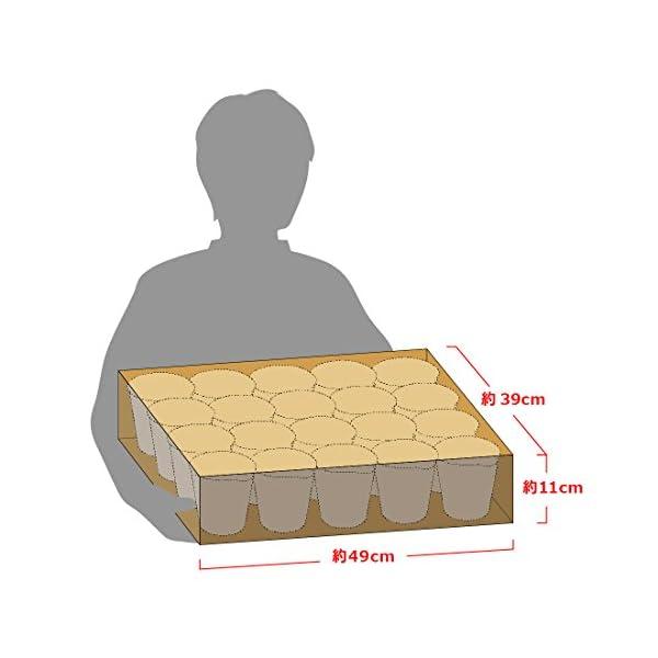 日清 カップヌードル カレー 87g×20個の紹介画像4