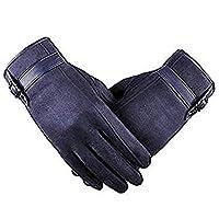 手袋 メンズ Caseeto 裏起毛 防寒 スマホタッチ対応 グローブ 紳士用 冬(フリーサイズ, 縦Blue)