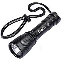 CrazyFire ダイビングライト1000LM 防水LED懐中電灯 3モード 水中ライト 高輝度 CREE XM-L2(U4) 完全防水 キャンプ 登山 釣り (DIV11)