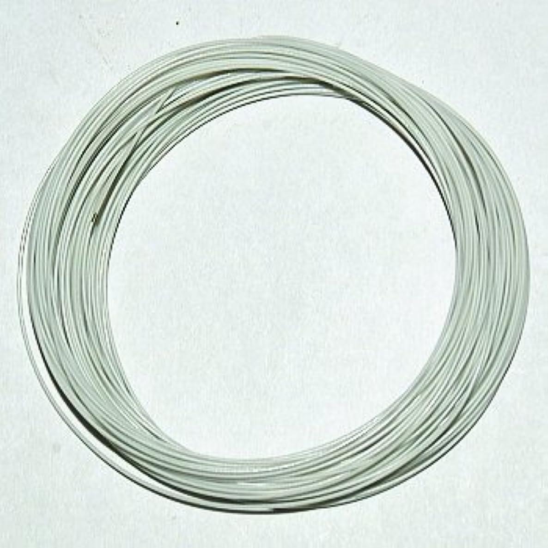 分散悔い改めるパトワ潤工社 ETFE電線(ジュンフロン線) 10m(±2%) 白 ETFE0.26WL10