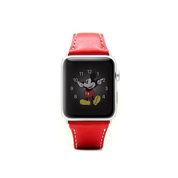 SLG Design Apple Watch 3...の商品画像