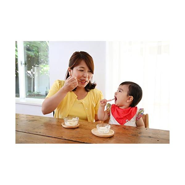 ピジョン 赤ちゃんのぷちアイス 3食分×2袋の紹介画像5