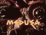 メドゥーサ 禁断のリ・インカネーション [DVD] 画像