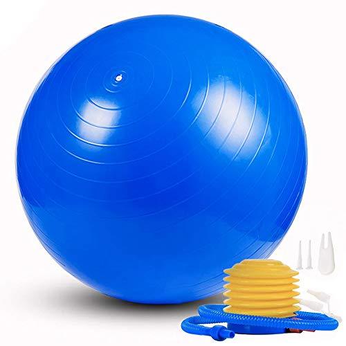 ANBURT バランスボール 65cm ダイエット フィットネスバール ヨガボール エクササイズボール 運動 椅子 破裂防止機能付き アンチバースト仕様 エアポンプ付き 栓付き プレゼント