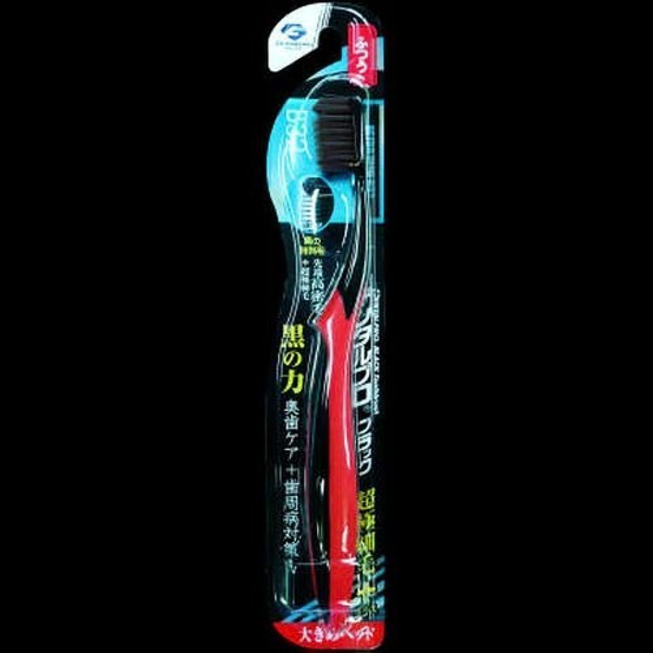 振る舞い質素なランドマークデンタルプロ ブラック歯ブラシ 超極細毛プラス大きめヘッド ふつう ×2セット