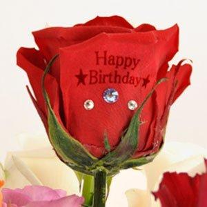 プリザーブドフラワー 花花 メッセージローズ 専用ギフトBOX付 (バラの花びらに メッセージ印字) 枯れないお花 お祝い プチギフト プレゼント (オリジナルメッセージカード ラッピング 無料対応) クイーン レッド