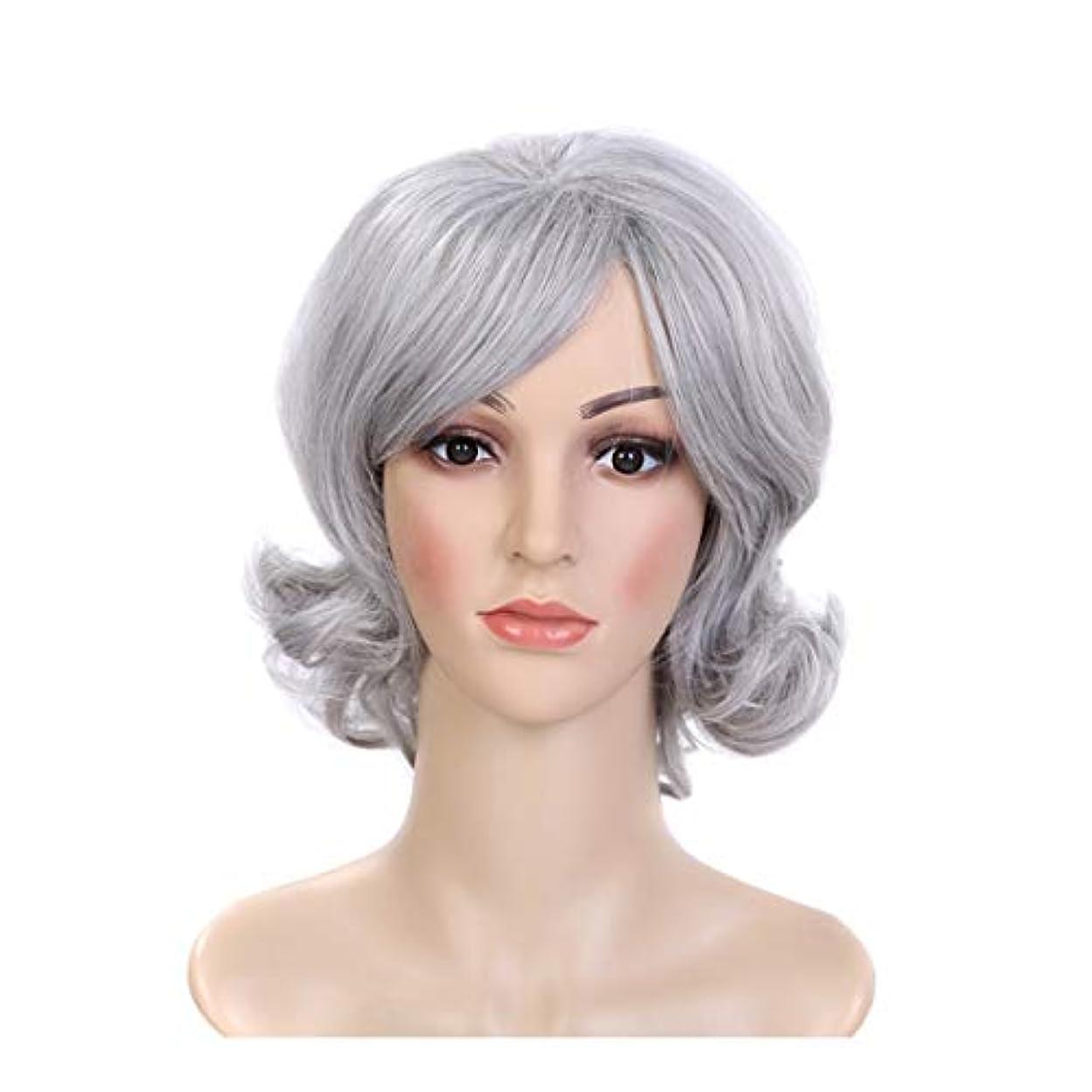 食料品店任意蘇生するYOUQIU ホワイト色のウィッグ女性の女の子のかつらのためのショートカーリーヘア合成ふわふわフルウィッグ (色 : Silver grey/grand ash)
