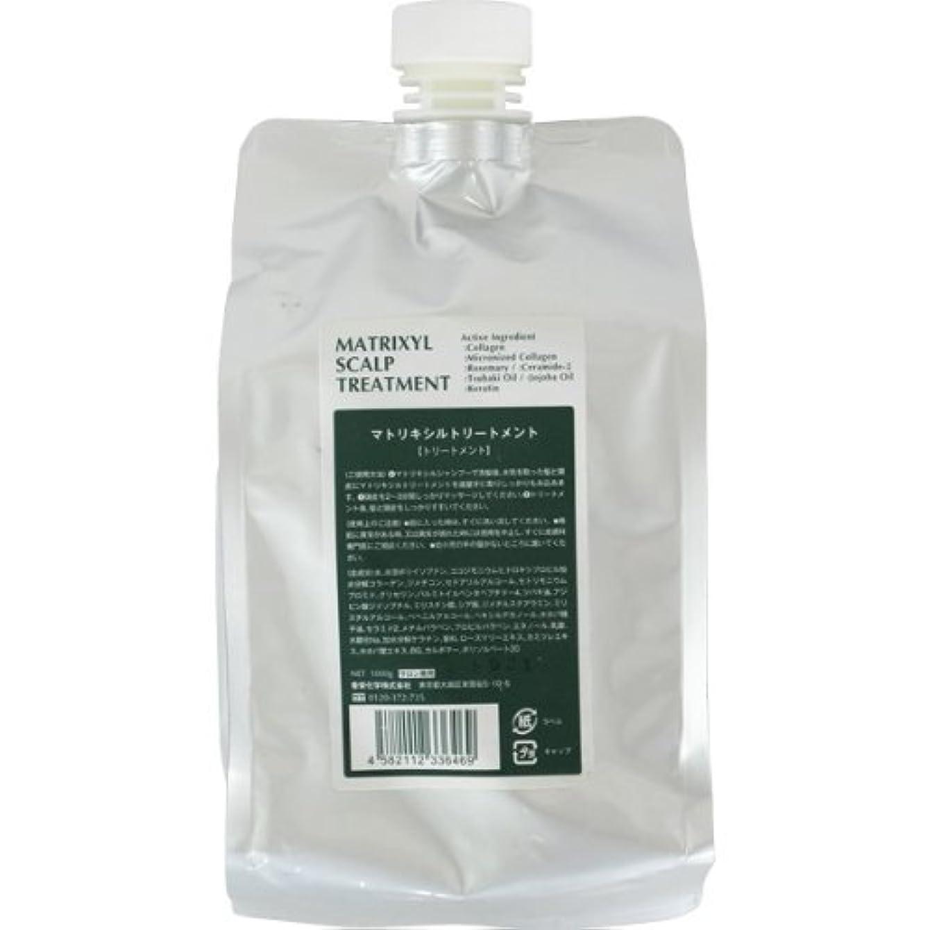 アイデアオゾン活発香栄化学 マトリキシル スキャルプトリートメント レフィル 1000g