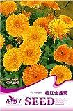 Mikedaoerによってオレンジキンセンカ種子30鉢植えマリーゴールドの花の種子チャーミングな形状ウィローA198