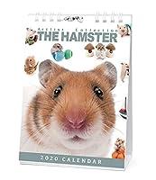 カレンダー 2020 卓上 THE HAMSTER ハムスター 403380 2020年1月-2020年12月 アーリスト はむすたー