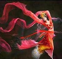 ししゅう糸 DMC糸 クロスステッチ刺繍キット 布地に図柄印刷 神女舞い