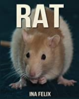 Rat: Children Book of Fun Facts & Amazing Photos on Animals in Nature