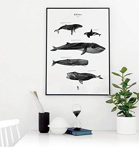 RoomClip商品情報 - 【Coco Lapine Design/ココラパンデザイン】Ketos ポスター 50x70cm