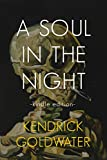 A Soul In The Night: a modern poetry collection (English Edition)