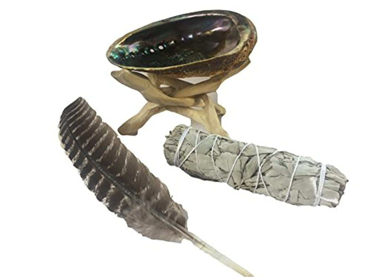 導出復活ホールドSmudgingキットwith Abaloneシェル、木製三脚、ホワイトセージSmudge Stick &フェザー