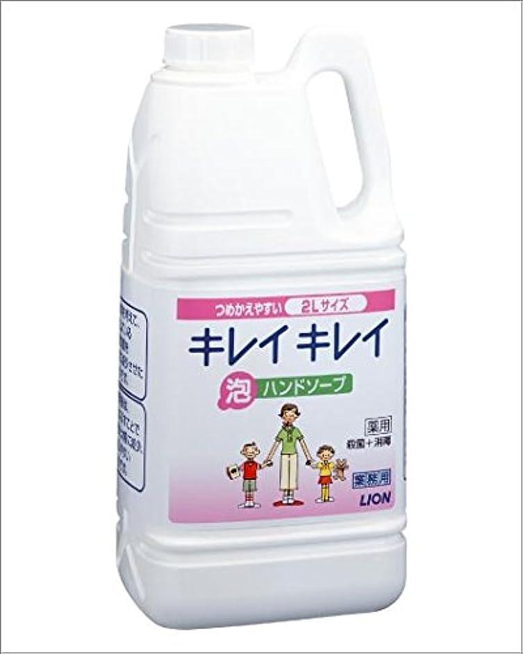 リル味ボードライオン キレイキレイ 薬用泡ハンドソープ 2リットル 6個セット