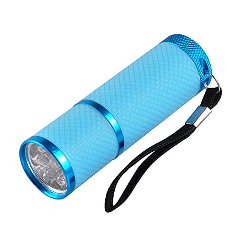 側溝歯代わりのネイル?レジンクラフト LED UVライト ブルー BY-NL550 ネコポス発送 送料無料