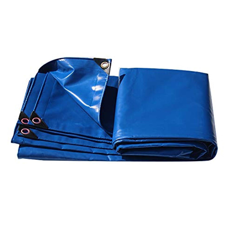 説得力のあるアプライアンスバラエティQL 防水性のあるヘビーデューティーPVC(グロメット付)テントキャンプ用プールカバー、ブルー - 450g /m² tarp (Size : 3*5m)