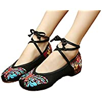 AvaCostume Women's Ankle Strap Butterfly Embroidery Casual Party Dance Dress