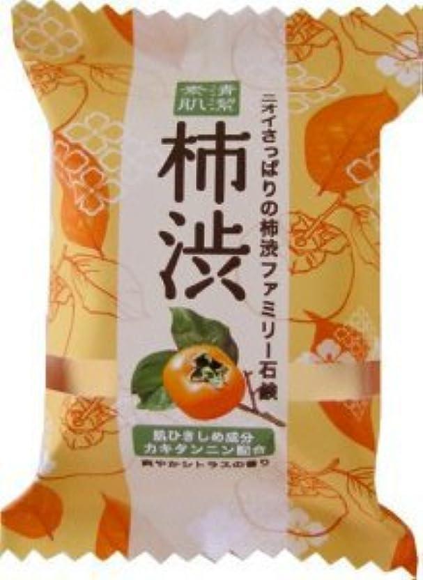 生産的ナチュラやむを得ないペリカン石鹸 ファミリー柿渋1P PKSBSP