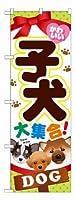 のぼり旗「かわいい子犬大集合!」 20枚セット