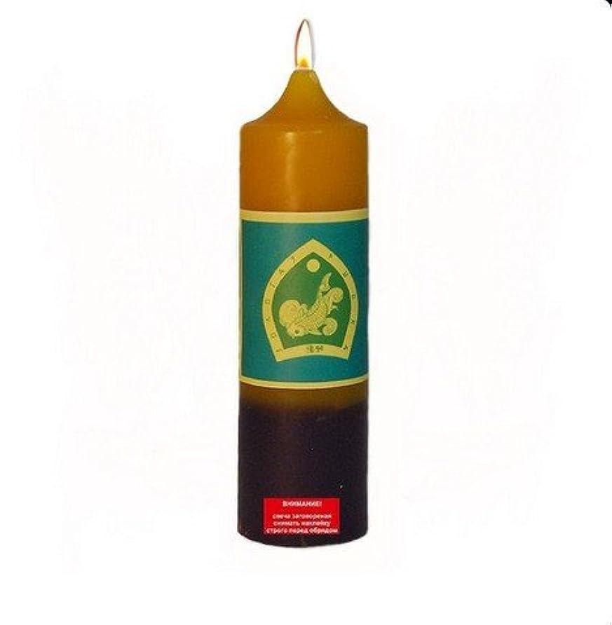 電化する一時的モチーフGoldfish Buddha Candle