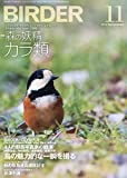BIRDER(バーダー)2018年11月号 森の妖精 カラ類