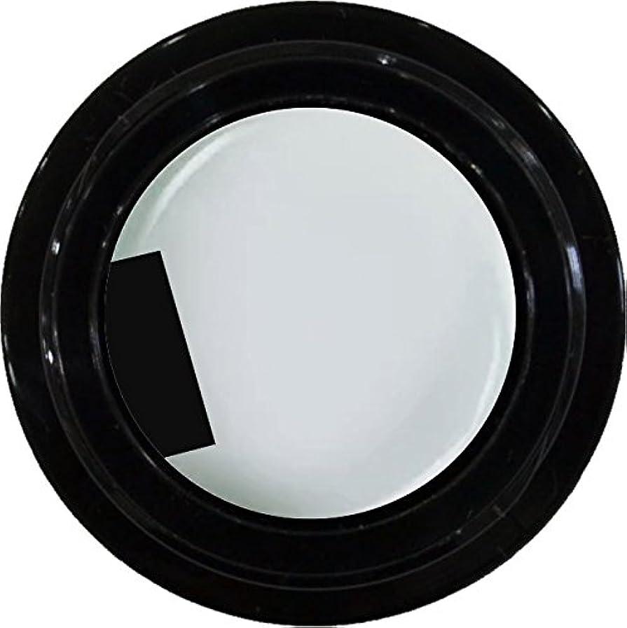 十分ではない絡み合い不注意カラージェル enchant color gel M004 JasmineWhite 3g/ マットカラージェル M004 ジャスミンホワイト 3グラム