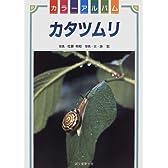 カタツムリ (カラーアルバム)