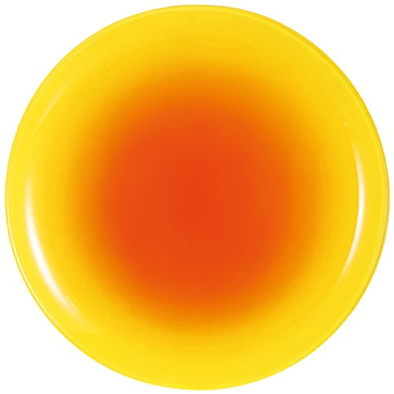 Luminarc ディナー皿 プレート レモン?フィズ 25 G9547