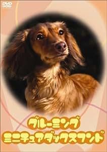 グルーミング・ミニチュアダックスフンド [DVD]