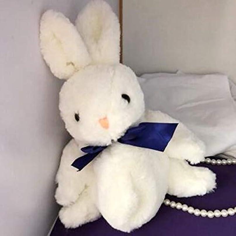 国籍大惨事貪欲ロリータ風女の子学生風鞄 リュックサック バッグ超可愛いウサギ道具小物 コスプレ変装用 遊び旅行用妹 彼女の最愛ギフト