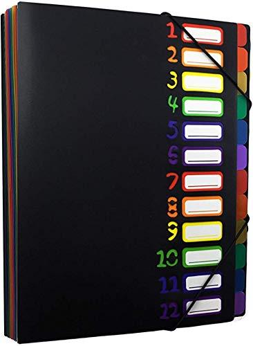 ドキュメントファイル A4 12ポケット 書類ケース 分類 ファイルケース 仕分け ファイルフォルダ 大容量