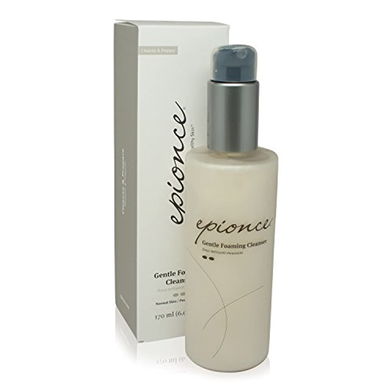 コロニアル夕食を食べる行方不明Epionce Gentle Foaming Cleanser - For Normal to Combination Skin 170ml/6oz並行輸入品
