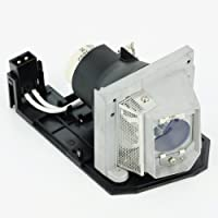 610-346-4633/LMP138 Lamp Module for Projector SANYO PDG-DWL100 PDG-DXL100 【Creative Arts】 [並行輸入品]
