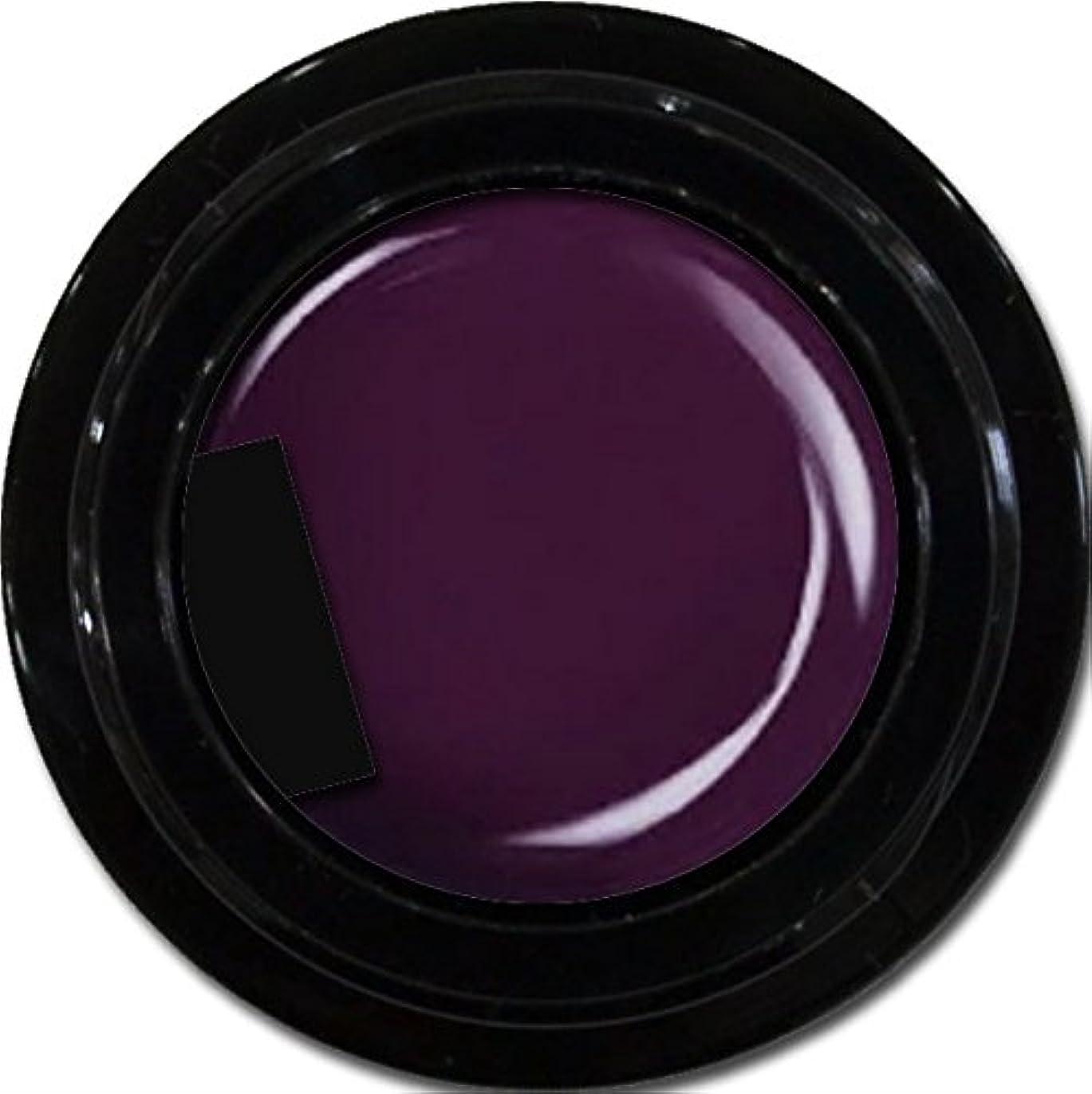 アルカイック早くあるカラージェル enchant color gel M514DeepPurple3g/ マットカラージェル M514ディープパープル 3グラム