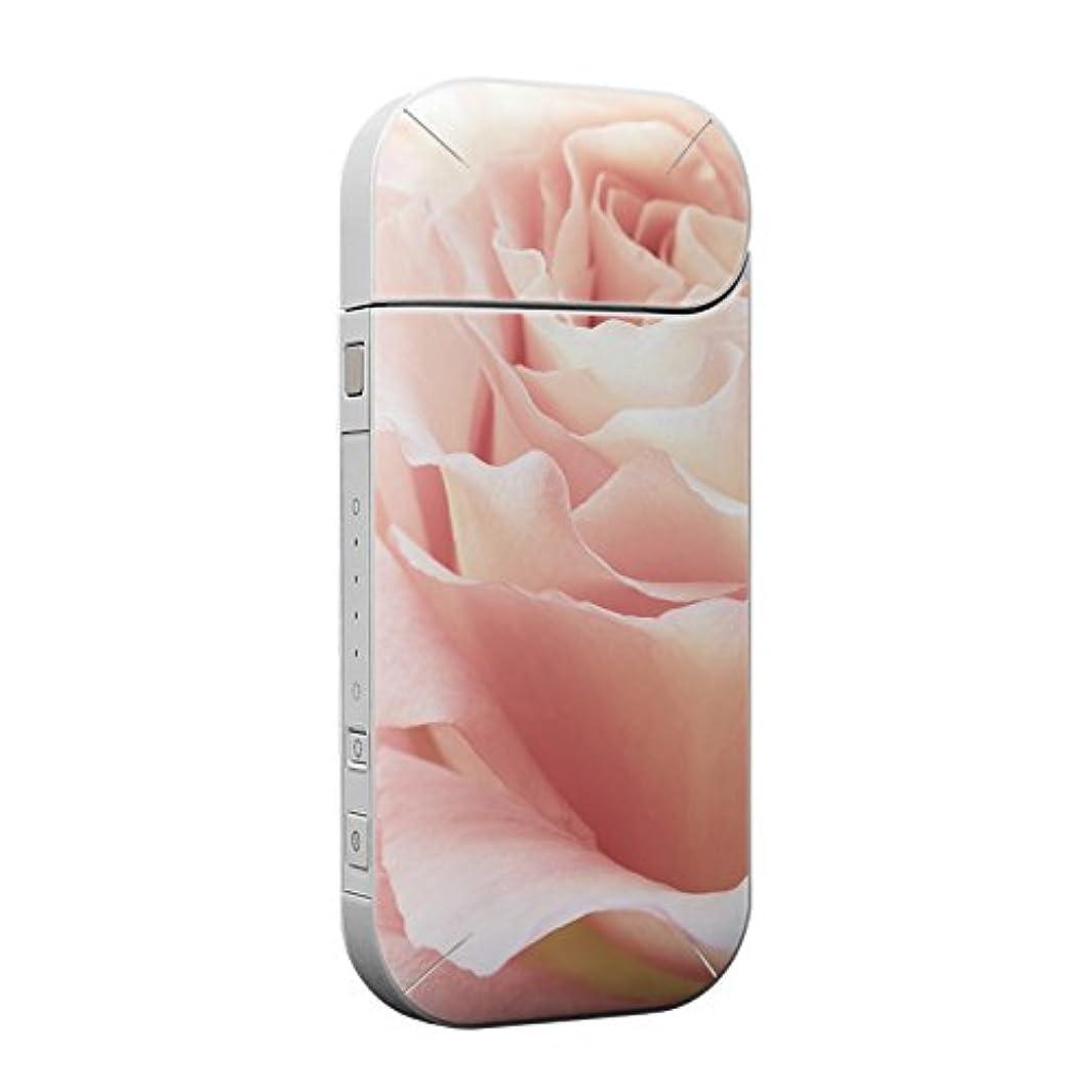 仕出しますスリムパッチIQOS 専用スキンシール 裏表2枚セット 保護フィルム ステッカー デコ アクセサリー デザイン おしゃれ フラワー 写真 花 フラワー 006518