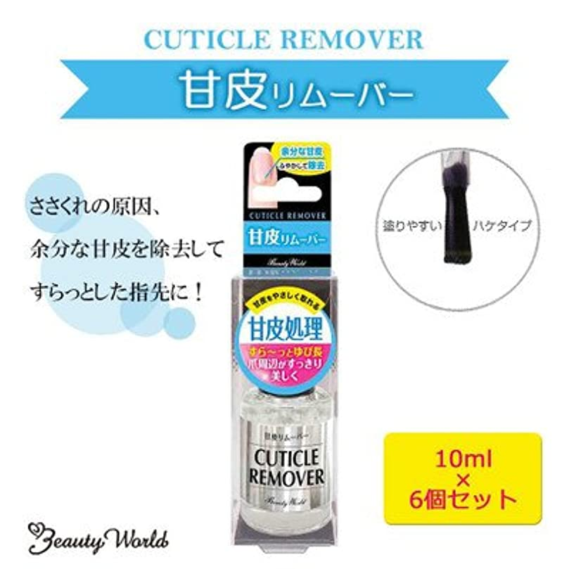 ミリメーター広告現代の甘皮をやさしく除去 ビューティーワールド LT甘皮リムーバー 10ml 6個セット