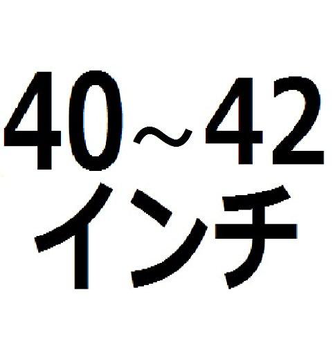 サンワダイレクト 液晶テレビ画面保護パネル 40インチ 42インチ 保護プロテクター 液晶テレビ保護パネル 200-CRT006