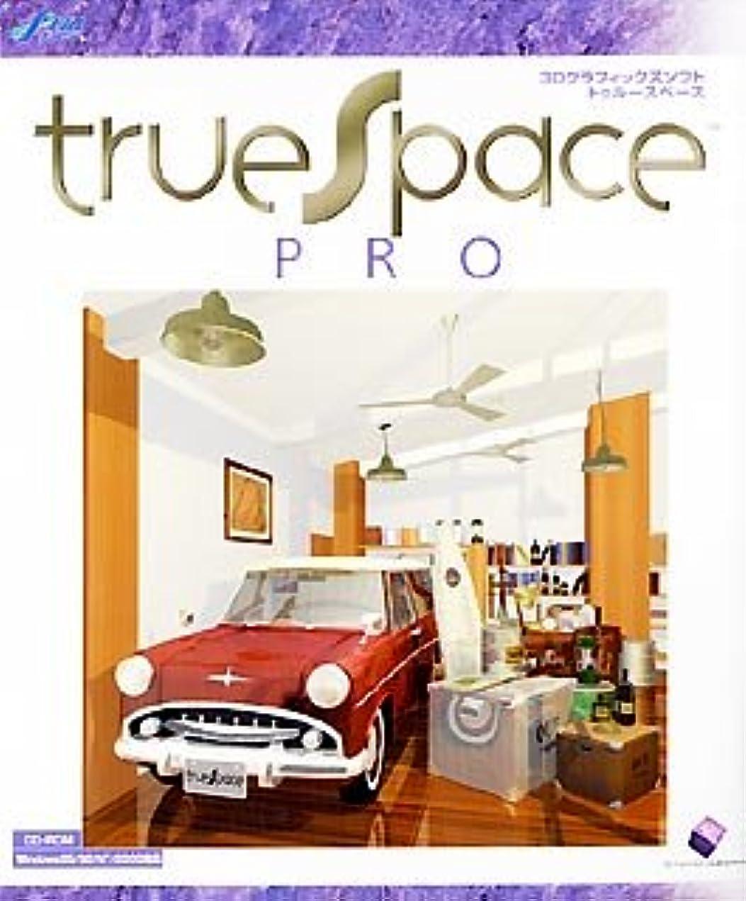 出くわす百反乱trueSpace PRO