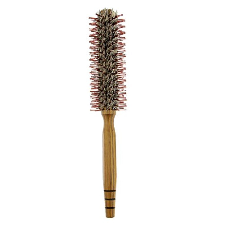 日没深さリスナーロールブラシ ヘアコーム 木製櫛 家庭用 サロン 美容師 3サイズ - M