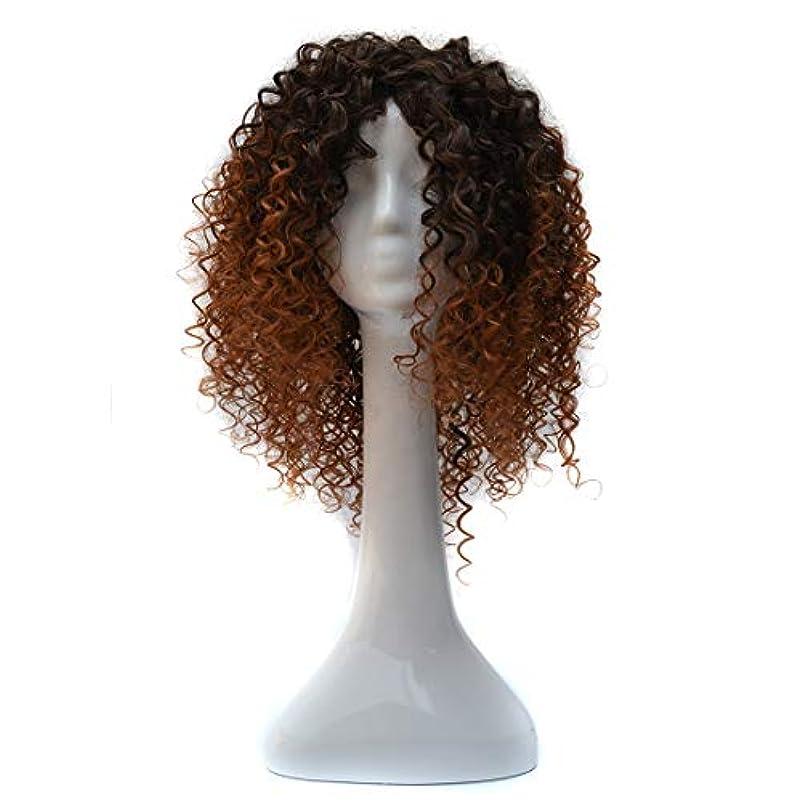 必需品定期的な同様のWTYD 美容ヘアツール T191006女性のための短いと小さなカーリーヘアのヨーロッパとアメリカのブラックグラデーションライトブラウンウィッグヘッドギア