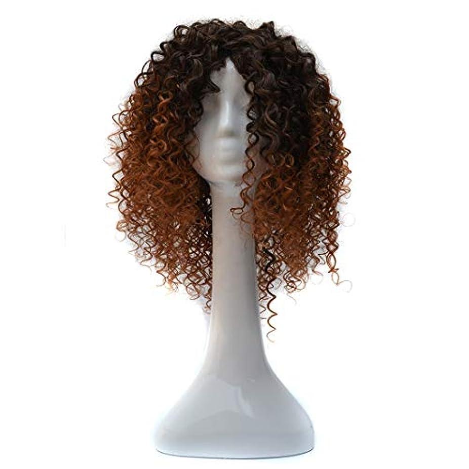 放散する価値のないコミュニケーションWTYD 美容ヘアツール T191006女性のための短いと小さなカーリーヘアのヨーロッパとアメリカのブラックグラデーションライトブラウンウィッグヘッドギア