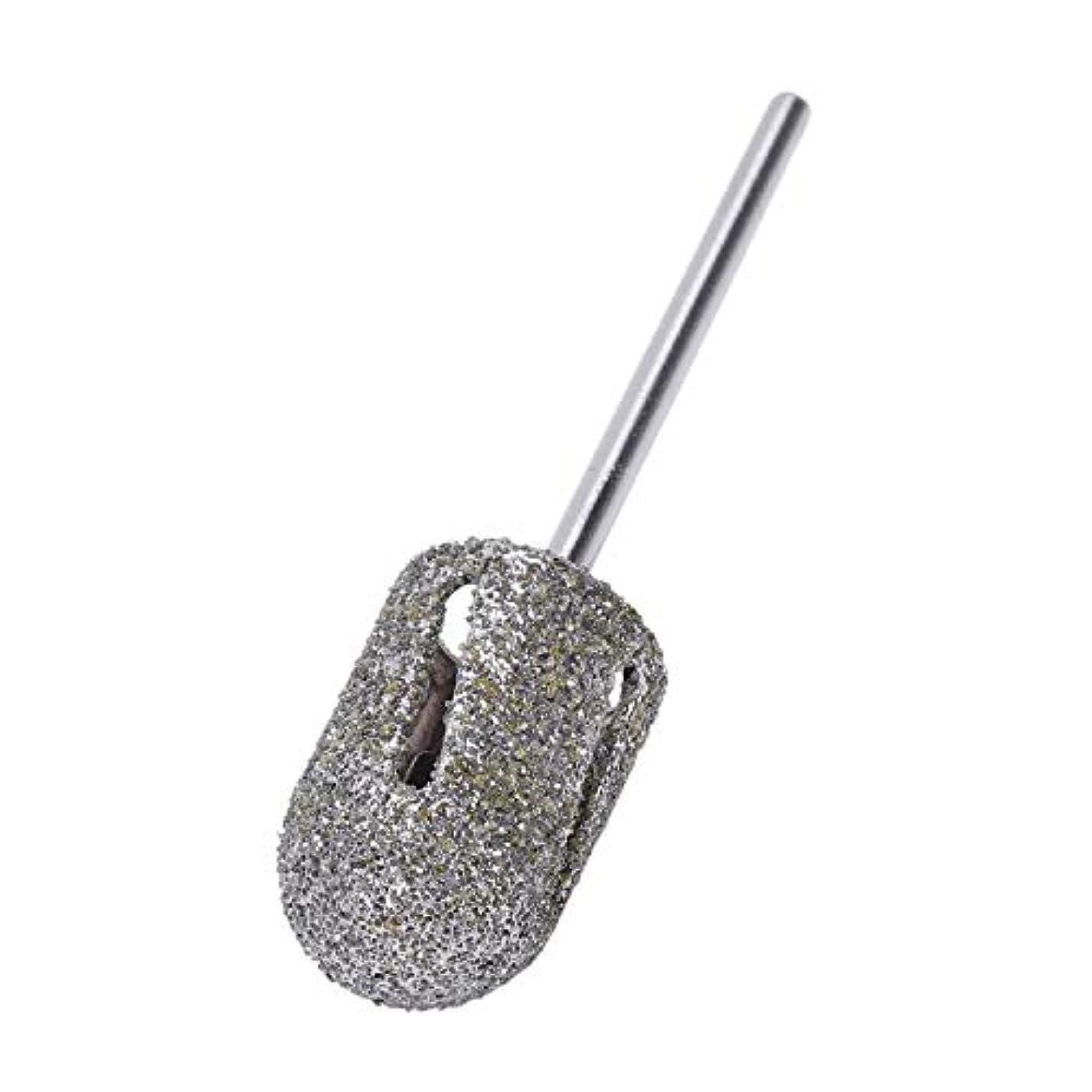 不一致殺します脱走Vaorwne ダイヤモンドドリルビットロータリー フットキューティクルクリーン マニキュアペディキュアツール ドリルアクセサリー ネイルミルズ-1