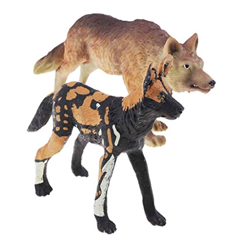Prettyia 動物のおもちゃ2個セット 知育資源ハイシミュレーション動物フィギュア アフリカ野生犬 ハンティングウルフ