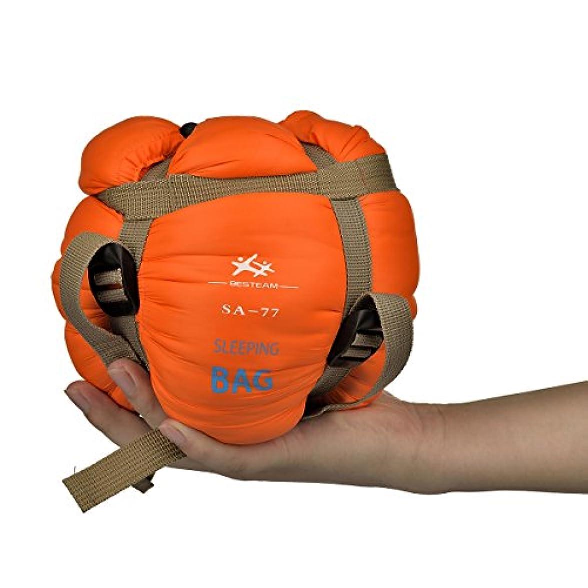 反乱勝利した力学Agemore 寝袋 シュラフ 軽量 封筒型 スリーピングバッグ コンパクト キャンプ アウトドア 丸洗い 最低使用温度15度 収納袋 4カラー